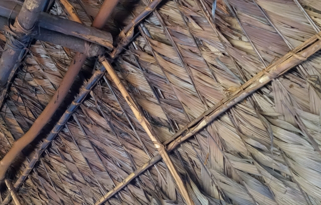 Hut Roof Amalia Peru