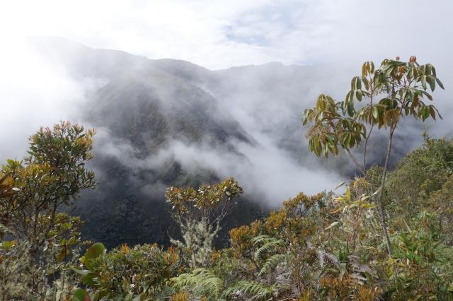 Wayqecha Veiw Peru2